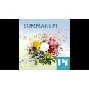 Sommar & Vinter i P1 - Sveriges Radio