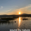 Sound By Nature - Sound By Nature