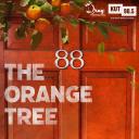 The Orange Tree - The Drag Audio Production House