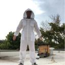 Les abeilles? Pourquoi pas - Martin de Laminne de Bex