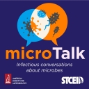 microTalk - Karl Klose
