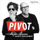 Pivot - Recode