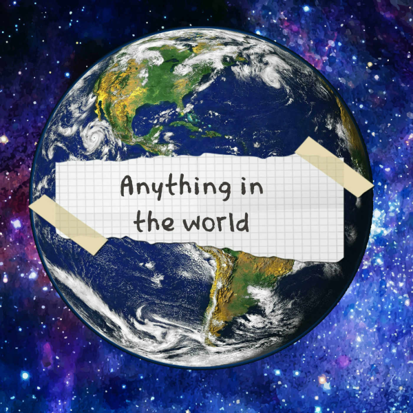 Anything in The World