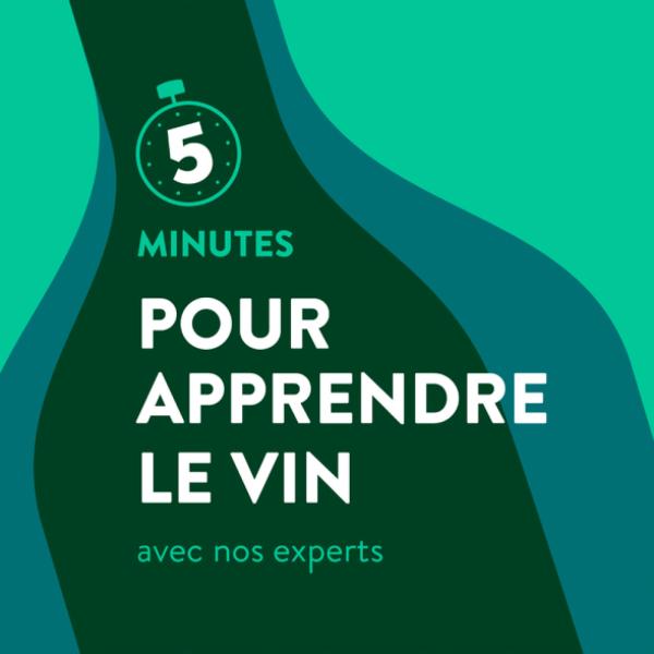 5 minutes pour apprendre le vin