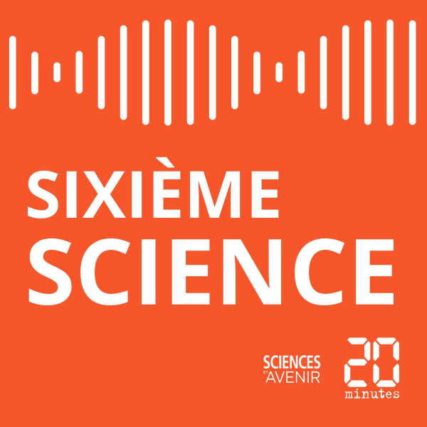 Sixième Science