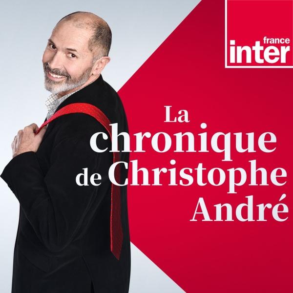 La chronique de Christophe   André