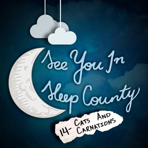 See You In Sleep County